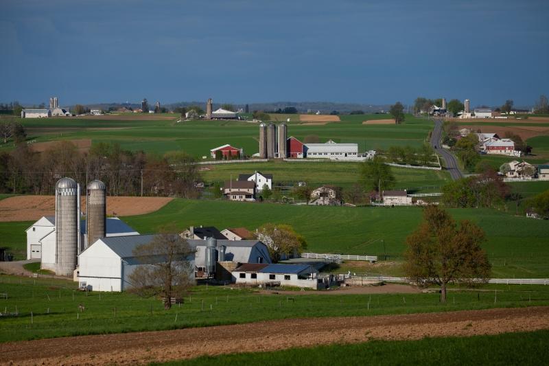jacks farm-1